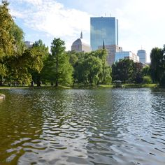 11 Best Public Parks in Boston park The 11 Best Public Parks in Boston, Power Ranked Moving To Boston, New Boston, Boston Common, Visit Boston, Boston Public, Boston Restaurants, Living In Boston, Boston Museums, Boston Things To Do