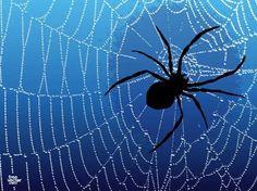 Spider Free Vector Silhouette Clip Art, Animal Silhouette, Vector Free Download, Free Vector Images, Vector Graphics, Vector Art, Dark Backgrounds, Zoo Animals, Sea Creatures