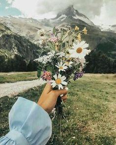 all flowery - all beautiful Pretty Flowers, Wild Flowers, Spring Flowers, Art Amour, Photo Images, Foto Instagram, Disney Instagram, Flower Aesthetic, Jolie Photo