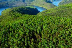 Nationalpark Kellerwald-Edersee, photo: picture alliance