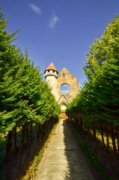 The Cistercian Monastery of Carta is one of the oldest and most beautiful gothic monuments from Romania and the most Eastern point of the Cistercians' expansion.