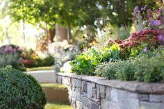 """The New Wave"" by Ian Barker Gardens, Melbourne International Flower & Garden Show 2013 Garden Design Images, Landscape Design, Garden Show, Dream Garden, Hampton Garden, Design Projects, Design Ideas, Lawn And Garden, The Hamptons"