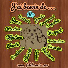Image - - education canine, conseil en comportement,... - Skyrock.com Education Canine, Bindi, Love Story, Comics, Pets, Attention, Fictional Characters, Affirmations, Midget Cat