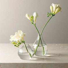 7 Thriving Tips: Vintage Glass Vases large vases crate and barrel.Gold Vases Dining Table black and white vases. Vase Centerpieces, Vases Decor, Vase Transparent, Round Glass Vase, Freesia Flowers, Verre Design, Paper Vase, Vase Crafts, Wooden Vase