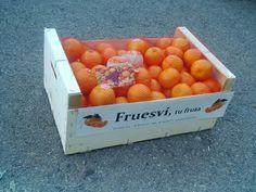 Fruesvi