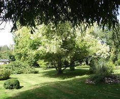 Photo Deco :   Normand   Maison Normande Avec Jardin