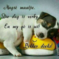 Positive Thoughts, Deep Thoughts, Goeie Nag, Afrikaans Quotes, Good Night Sweet Dreams, Good Night Quotes, Special Quotes, Sleep Tight, Morning Greeting