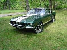 1967 Shelby GT 350 moss green