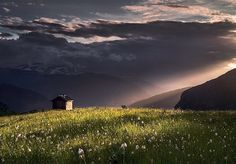 Lonely field, Norway, 2013, photograph by Max R.