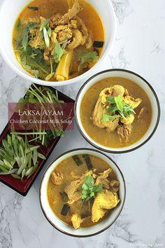 Laksa Ayam ~ Chicken Coconut Milk Soup