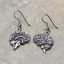 Anatomically correct Brain Earrings.