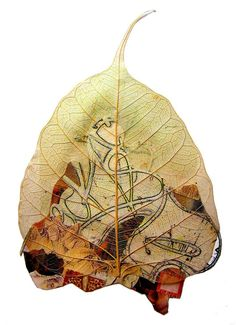 createcreatively:    Foglie 01, Abigail Doan (2006) #collage #leaf #botanical