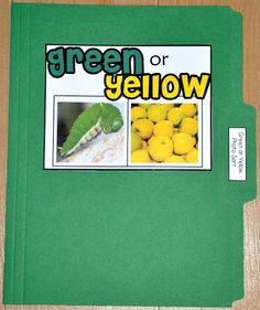 Green or Yellow Color Sort File Folder Game (Real Photos)