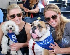 More and more major league baseball stadiums are hosting dog-friendly games. Here are just a few of them.