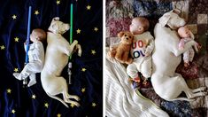 Little Archie Spence, who is a few months old, and English Pointer called Nora, are the main characters of this heart- warming photo story. They become such