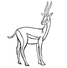 Free Safari Animal Coloring Pages. Color in this picture of an Antelope and others with our library of online coloring pages. Jungle Coloring Pages, Online Coloring Pages, Cool Coloring Pages, Animal Coloring Pages, Printable Coloring Pages, Coloring Sheets, Colouring, Fancy Dress Theme Ideas, Printable Animals