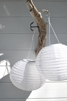 ♥paper lanterns hanging from tree