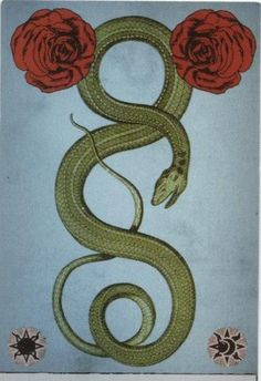 The Serpent Medicine Healing traditions of current and ancient women Hermes, Snake Art, Snake Tattoo, Sacred Geometry, Occult, Dark Art, Magick, Tattoo Inspiration, Cosmic