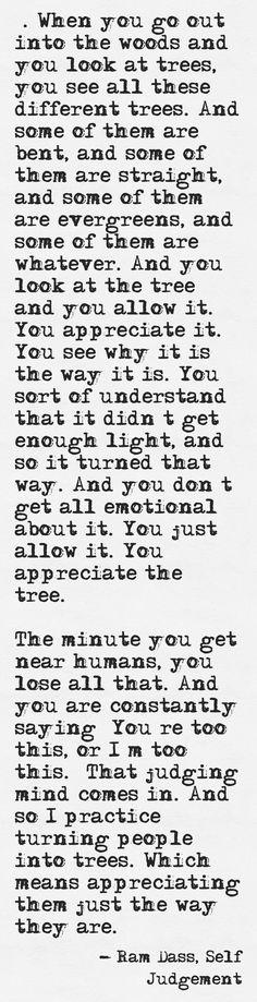 Ram Dass, Self Judgement
