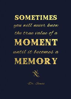 Sometimes you will never know the true value of a moment until it becomes a memory. - Dr. Suess
