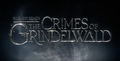 Dramatic new Fantastic Beasts sequel photos released including Jude Law as Dumbledore. Draco Malfoy, Hermione, La Saga Harry Potter, Harry Potter Love, Harry Potter Universal, Fantastic Beasts Movie, Fantastic Beasts And Where, Jude Law, Daniel Radcliffe