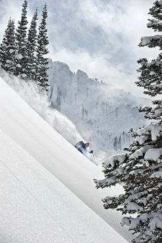 Most Scenic Resorts of 2013 | Alta, Utah