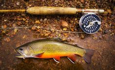 Blog | Fly Fishing | Gink and Gasoline |
