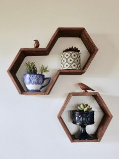 "Hexagon, ""honeycomb"" shelves using popsicle sticks -- I love this easy DIY!"