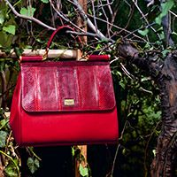 Dolce & Gabbana presents the Women's Accesories for Fall Winter 2014 2015: bags, shoes, jewellery and bijoux, scarves, foulards and more from the new Collection.