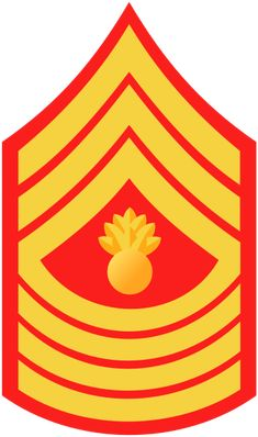 If you've made your commitment to enlisting in the United States Marine Corps you have successfully taken the first step towards earning the title of United States Marine. Marine Corps Ranks, Marine Officer, Master Chief Petty Officer, Master Sergeant, Marines Boot Camp, Military Ranks, Military Insignia, Military Veterans, Once A Marine