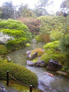 Japan Garden, Garden Pond, Kyoto Garden, Green Butterfly, Garden Features, Home Art, Japanese Gardens, Places, Water