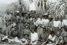 The first boatload of South Sea Islanders arrived in Brisbane's Moreton Bay 150 years ago today. They were brought to Australia as cheap farm labour, and many were 'blackbirded'. The Rifleman, Aboriginal People, South Seas, African American History, Old Photos, Vintage Photos, Black History, The Past, Australia