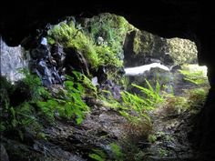 Secret Tunnel (Kaapoko) hike, Kauai, Hawaii - WhitneyZone Message Board
