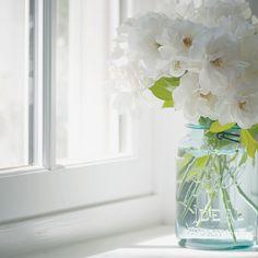 ~ window light by dear miss doll, via Flickr