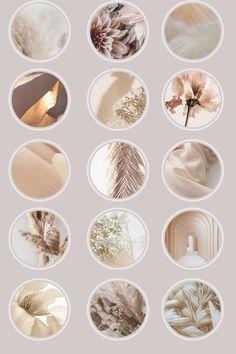 Feeds Instagram, Instagram Logo, Social Media Branding, Beige Highlights, Black And White Instagram, Lavender Aesthetic, Pastel Colour Palette, Iphone Background Wallpaper, Instagram Highlight Icons
