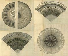 The Anatomy Of Plants, Nehemiah Grew