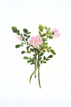 Rosa mosqueta, Sumi-e, tintas sobre seda  en soporte rígido de 38,5 x 25cm. Zia, Alesso, Watercolour Painting, Plants, Art, Watercolor Painting, Plant, Planets