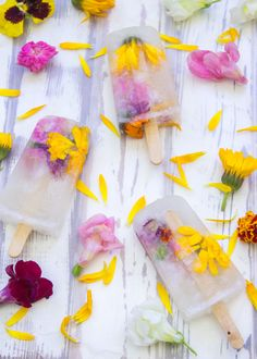 Adult Ice Pops!