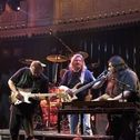 Picture of Walter Trout band