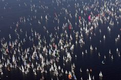 Barcolana regatta takes place in Trieste every year and involves 2000 ships!