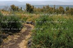 SCENARI X PRESEPE - GALLILEA (sfondo e lago lontano con flora e sentiero in primo piano)