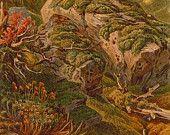 1892  Ernst Heyn Mosses and Liverworts Botanical  Lithograph