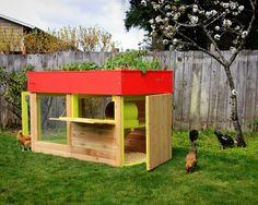wow! modern, minimalist chicken coop with a garden on top.