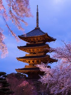 Spring Evening at Toji temple, Kyoto, Japan. It's places like this that make me miss Japan
