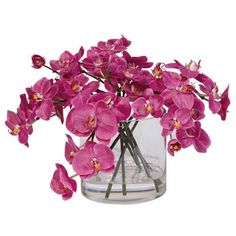 Fuchsia Orchids in Glass Cylinder ,  , large