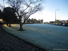 Winter in Invercargill is both varied and beautiful - if you're brave enough to venture out to catch such beauty. New Zealand South Island, Brave, Scenery, Sidewalk, June, Australia, Park, Winter, Places