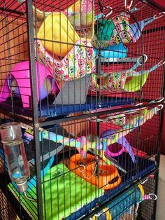 Rat cages Pet Rodents, Pet Rats, Pets, Pet Rat Cages, Rat Care, Twisters, Gerbil, Sugar Gliders, Pet Stuff