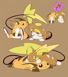 """So Tammy. Raichu or Alolan Raichu.""""Yes"" Two Kinds Of Chu Pokemon Alola, Pokemon Ships, Pokemon Comics, Pokemon Funny, Pokemon Fan Art, Pokemon Stuff, Pokemon Fusion, Pokemon Cards, Pichu Pikachu Raichu"