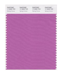 Pantone Smart Swatch 17-3020 Spring Crocus. Bright Springs can add also some cooler hues to theirs warm striking palette. First flowers after winter have strong fresh coloring.