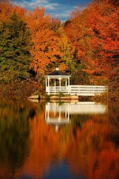 Autumn Leaves, White Gazebo | Colorful Autumn Leaves, New England